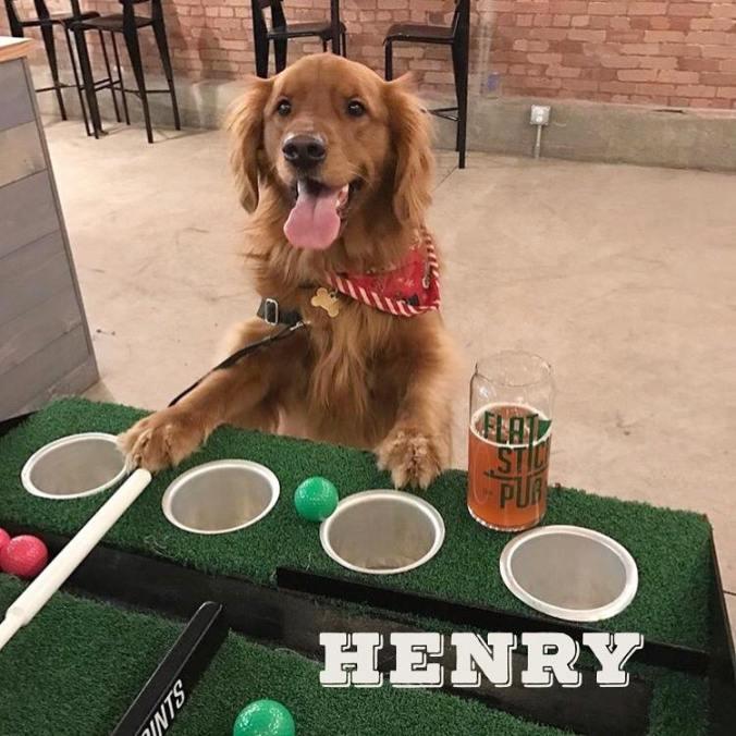 henry-flaststick